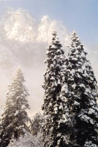 2014 - YOSEMITE WINTER - writers refuge FEB