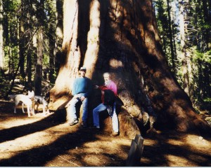 ED n Karl + redwood copy crp